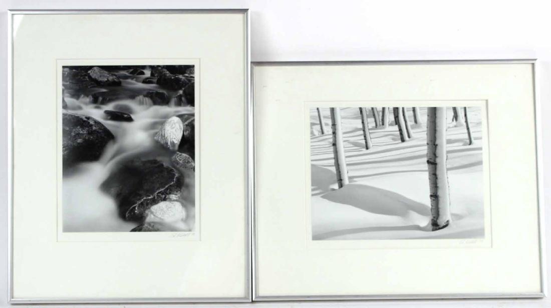 Two Landscape Photographs, Edward Riddell