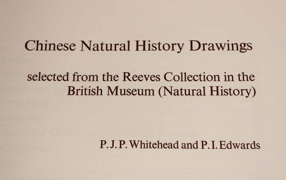 Chinese Natural History Drawings - 4