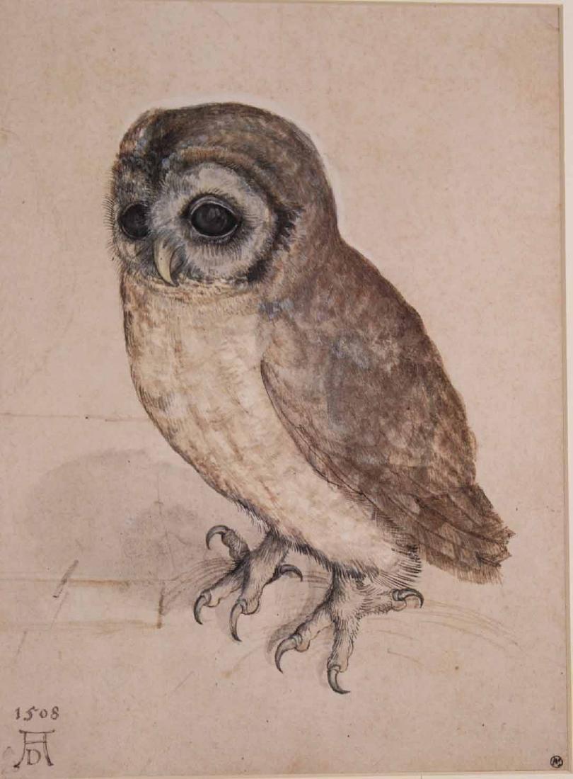 Two Prints, Albrecht Durer, Owl and Rabbit - 3