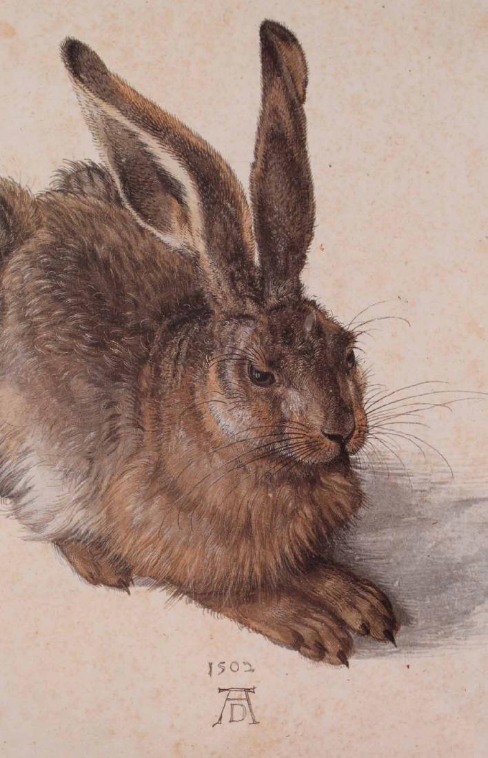 Two Prints, Albrecht Durer, Owl and Rabbit - 9