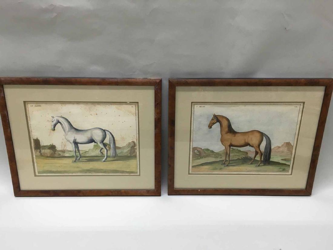 FIVE FRENCH HAND COLORED SPORTING ENGRAVINGS