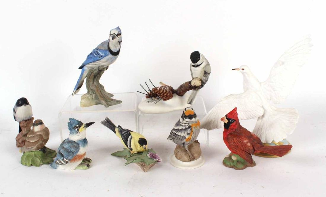 Nine Boehm Porcelain Bird Figurines