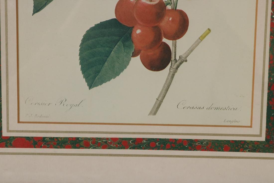 Three Prints of Fruit - 11