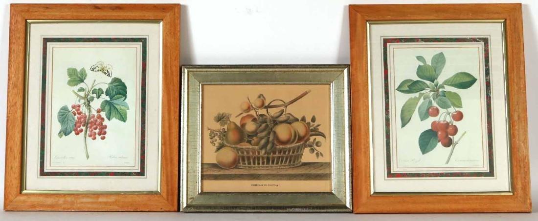 Three Prints of Fruit