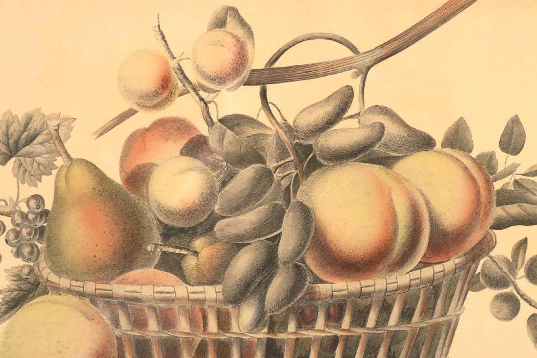 Three Prints of Fruit - 4