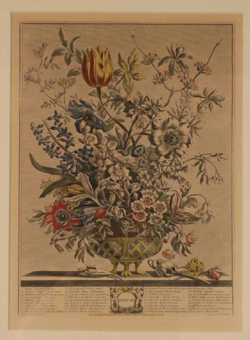 Three Botanical Still Life Prints - 10