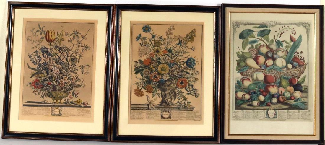 Three Botanical Still Life Prints