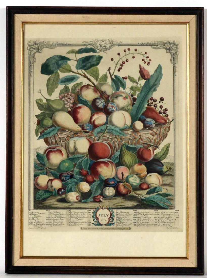 Three Botanical Still Life Prints - 6