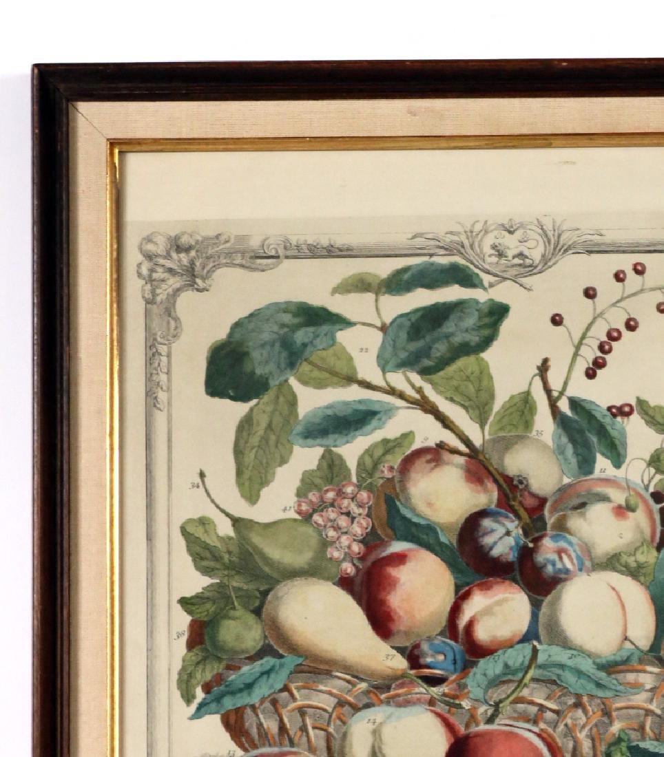 Three Botanical Still Life Prints - 7
