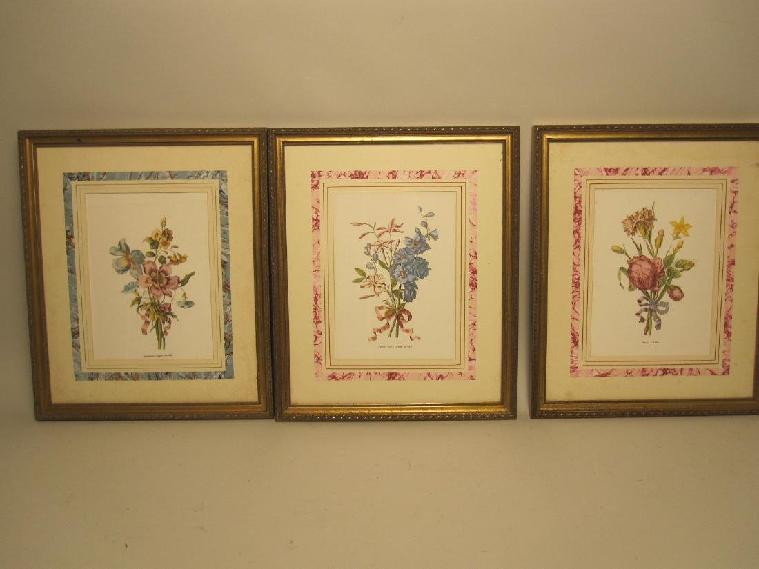 5 ASSORTED COLORED BOTANICAL PRINTS