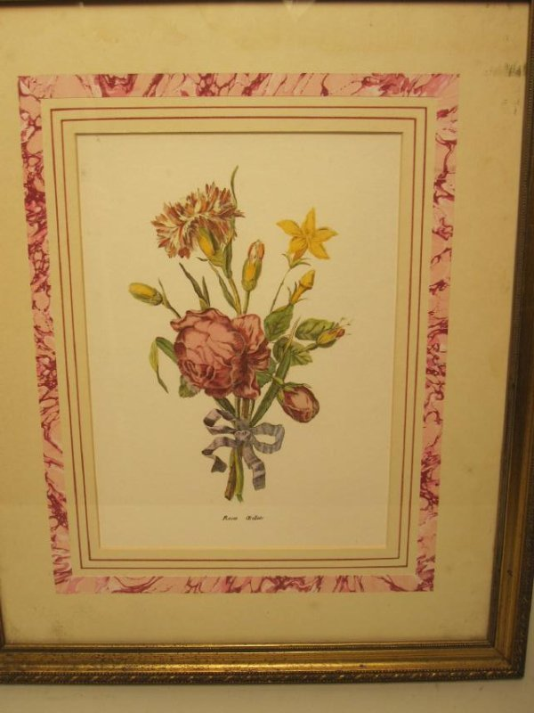 5 ASSORTED COLORED BOTANICAL PRINTS - 4
