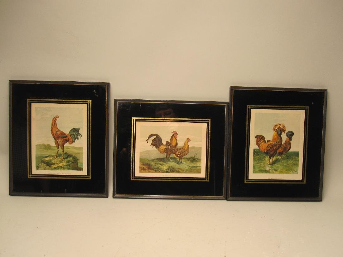 GROUP OF THREE ROOSTER PRINTS