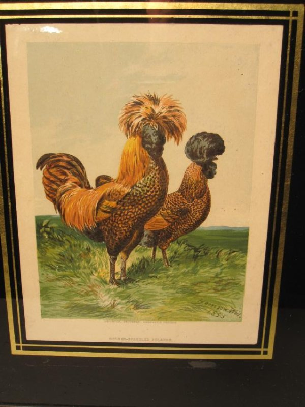 GROUP OF THREE ROOSTER PRINTS - 4