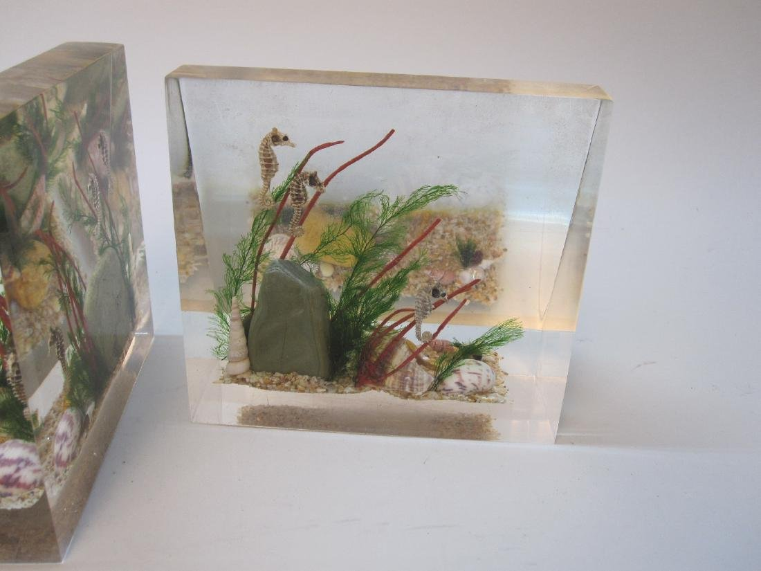 PAIR OF LUCITE BOOKENDS WITH SEASHELLS - 4