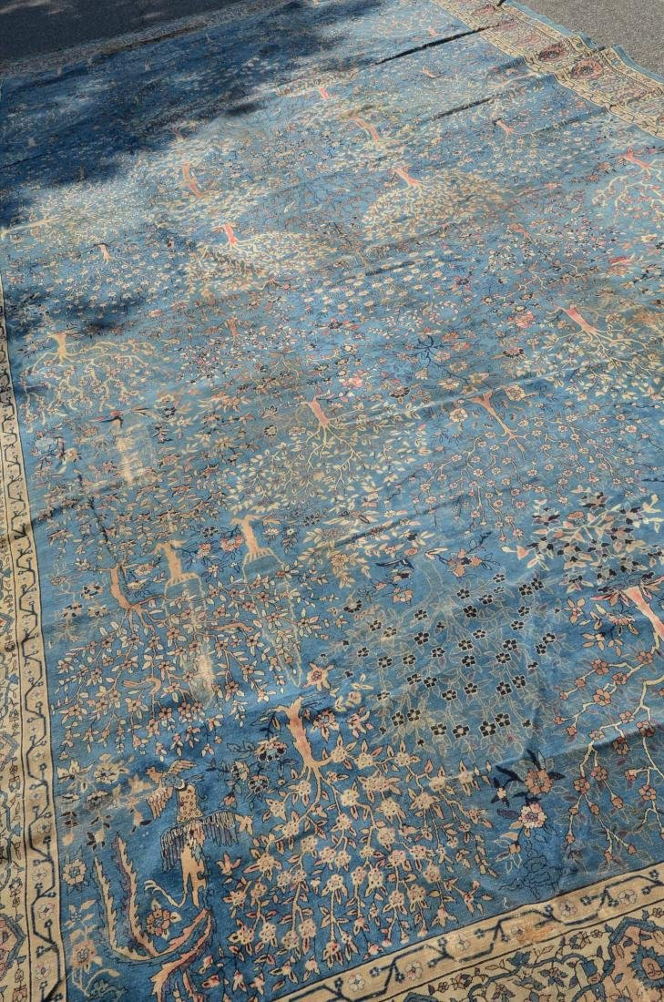 Amritsar Carpet - 3