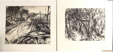 Two India Ink-Drybrush on Paper Landscapes