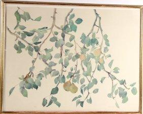 "Lithograph ""pears,"" Susan Van Campen"