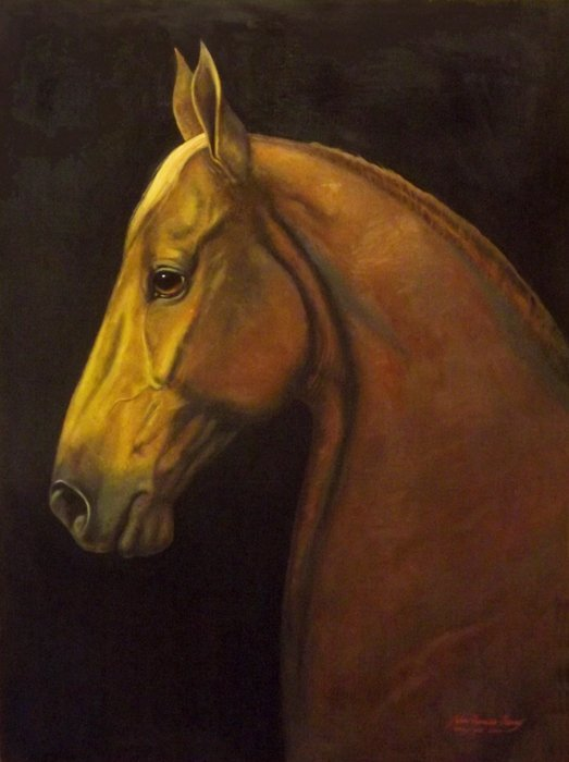 """Portrait of a Saddlebred""  by  John Berry"