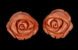 Two Cerasuolo coral flowers