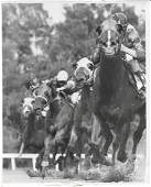1965  Photo Horse racing at Gulfstream in Florida