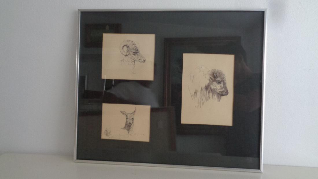 Original Art by Doris Hall Pen. Coral Cables Art Club