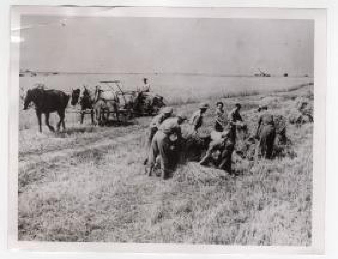 British Soldiers Help French Farmers With Harvest 1944