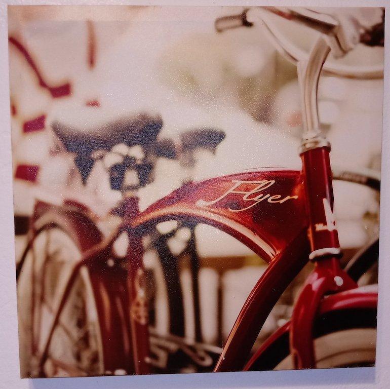 Fine Art Canvas Print Bicycle Flyer