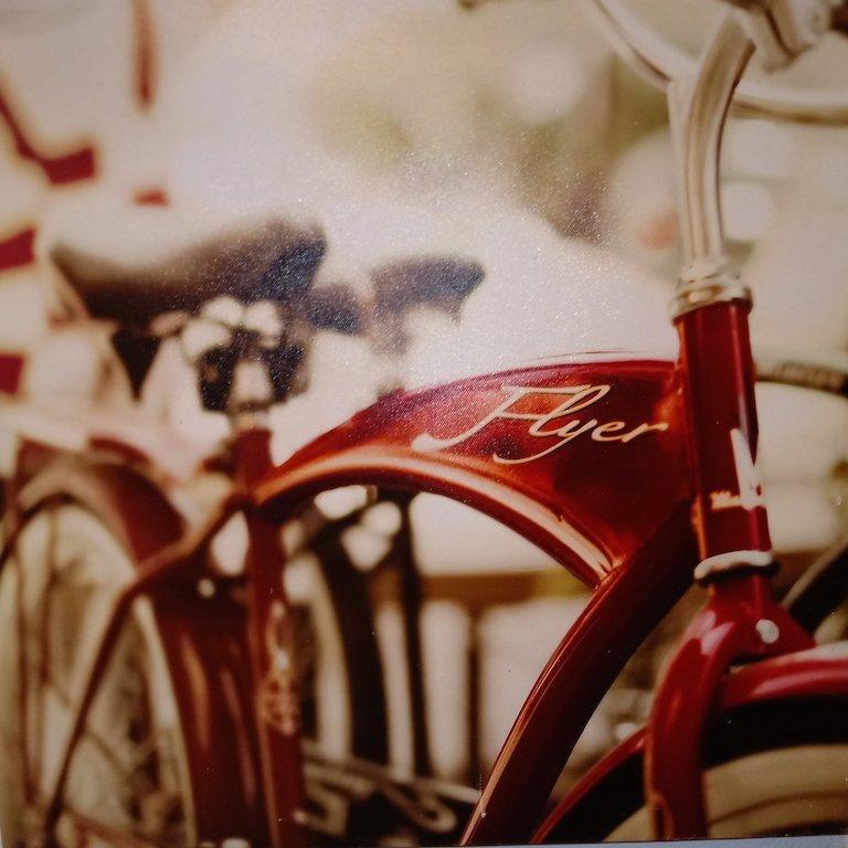 Fine Art Canvas Print Bicycle Flyer - 2