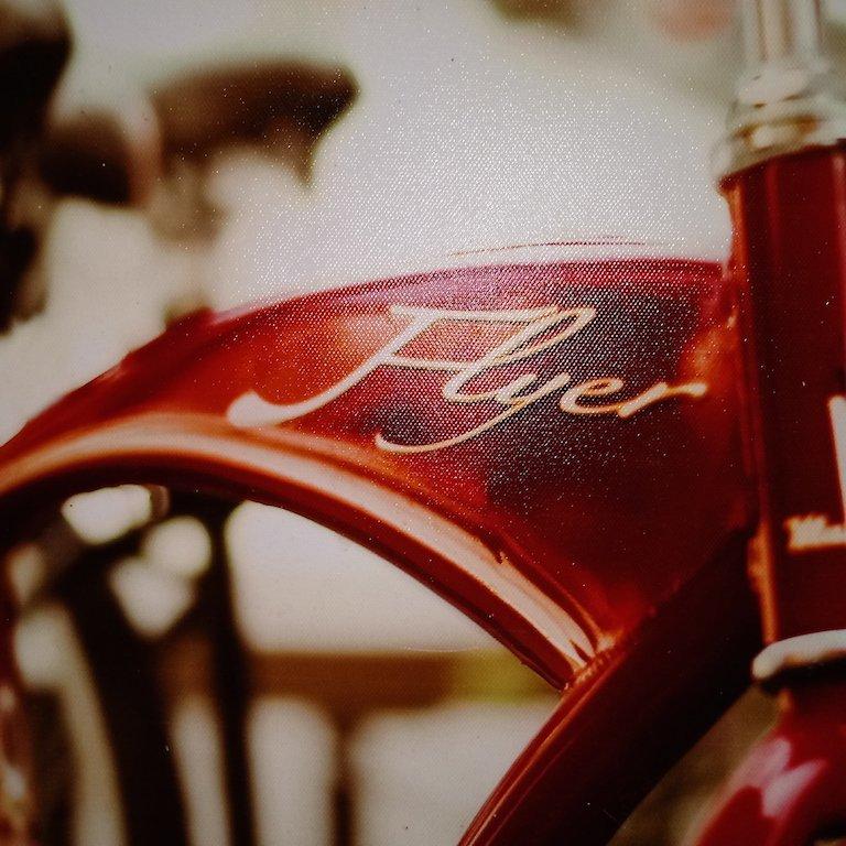 Fine Art Canvas Print Bicycle Flyer - 3