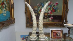 Pair Of Tall Chinese Hand Carved Bone Tusks.