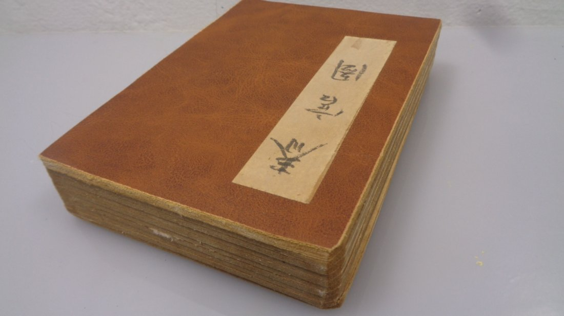 Hand Painted Chinese Scroll Book Album