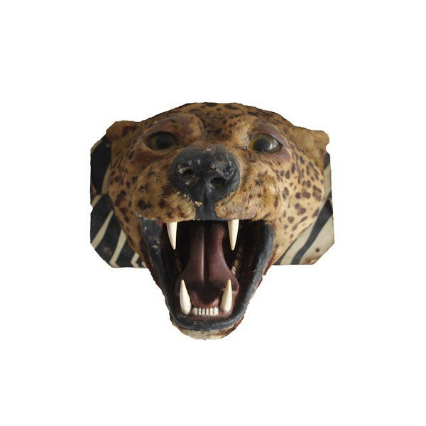 Antique Taxidermy Leopard Head