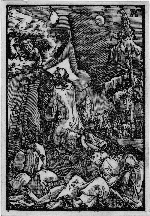 5004: Altdorfer, Albrecht: Sündenfall und Erlösung des