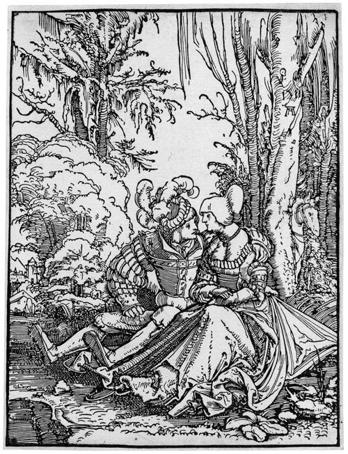 5008: Altdorfer, Albrecht: Das Liebespaar im Walde