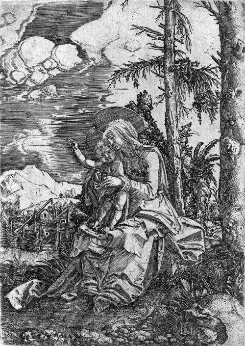 5003: Altdorfer, Albrecht: Madonna mit Kind in der Land