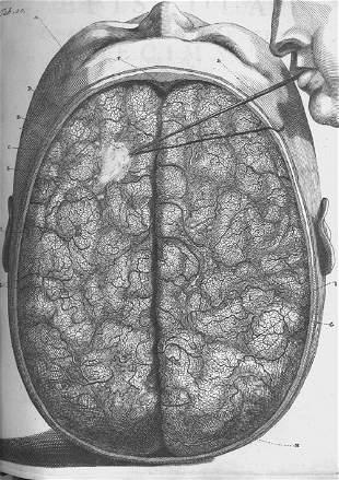 Ruysch, Fr: Observationum anatomico-chirurgicarum