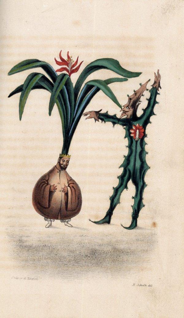 1424: Penelope: Taschenbuch für das Jahr 1816 [-47]