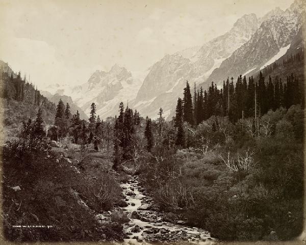 4016: Bourne, Samuel: Scinoe Valley Glaciers; Snowy Pea