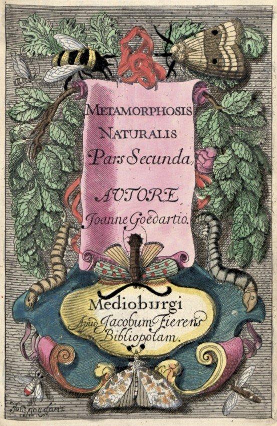 1281: Goedaert, Jan: Metamorphosis et historia naturali