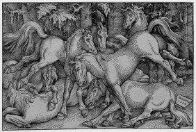 Baldung Grien, Hans: K�mpfende Pferde