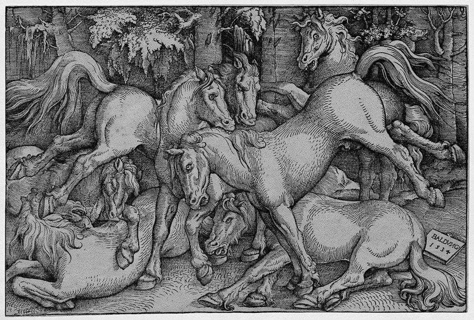5006: Baldung Grien, Hans: Kämpfende Pferde