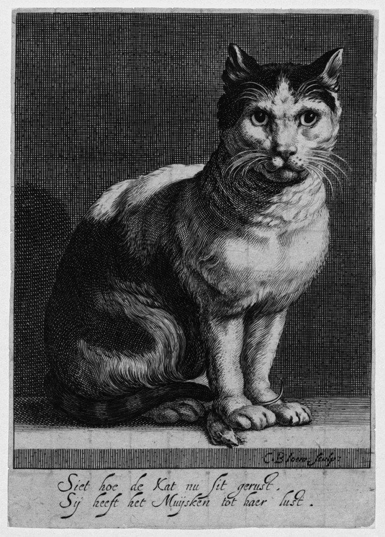 5017: Bloemaert, Cornelis: Katze mit einer Maus