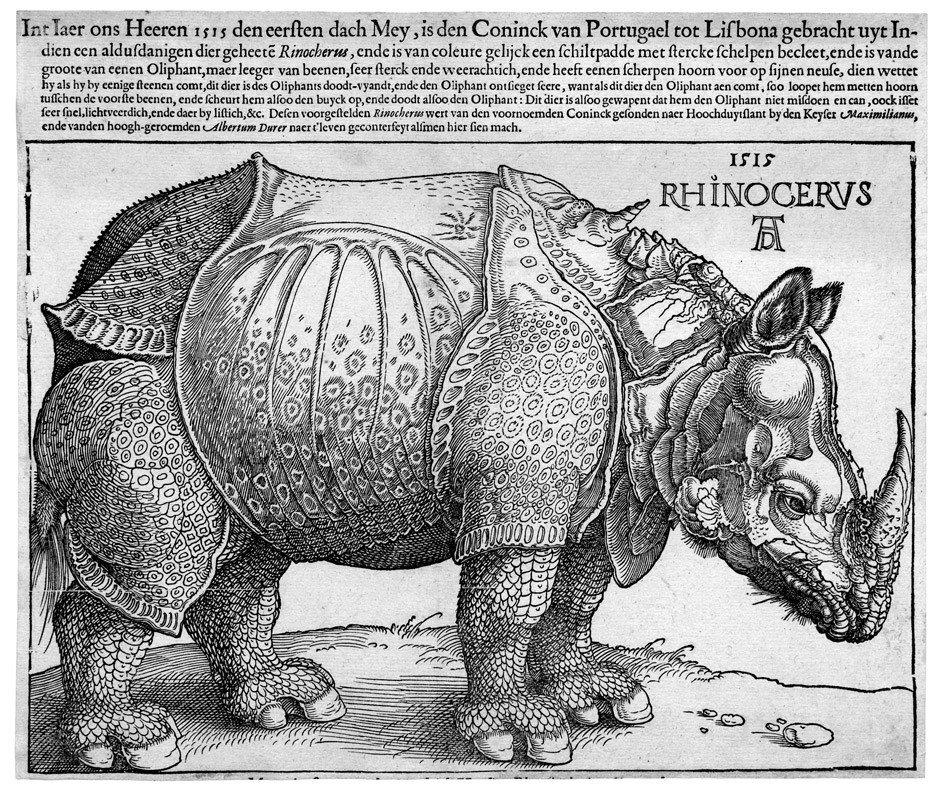 5076: Dürer, Albrecht: Das Rhinozeros