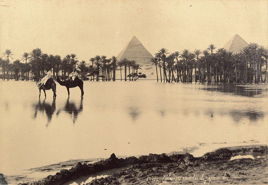 4017: Brugsch, Émile: Mummies of Ramses II, Thutmose II - 3