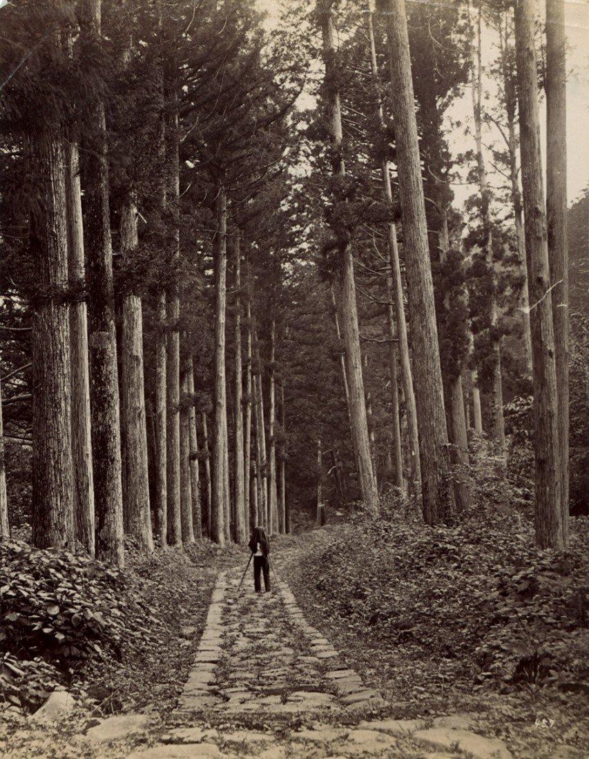 4055: Japan: Views of Japan