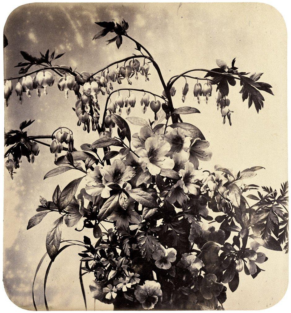 4009: Braun, Adolphe: Flower still life