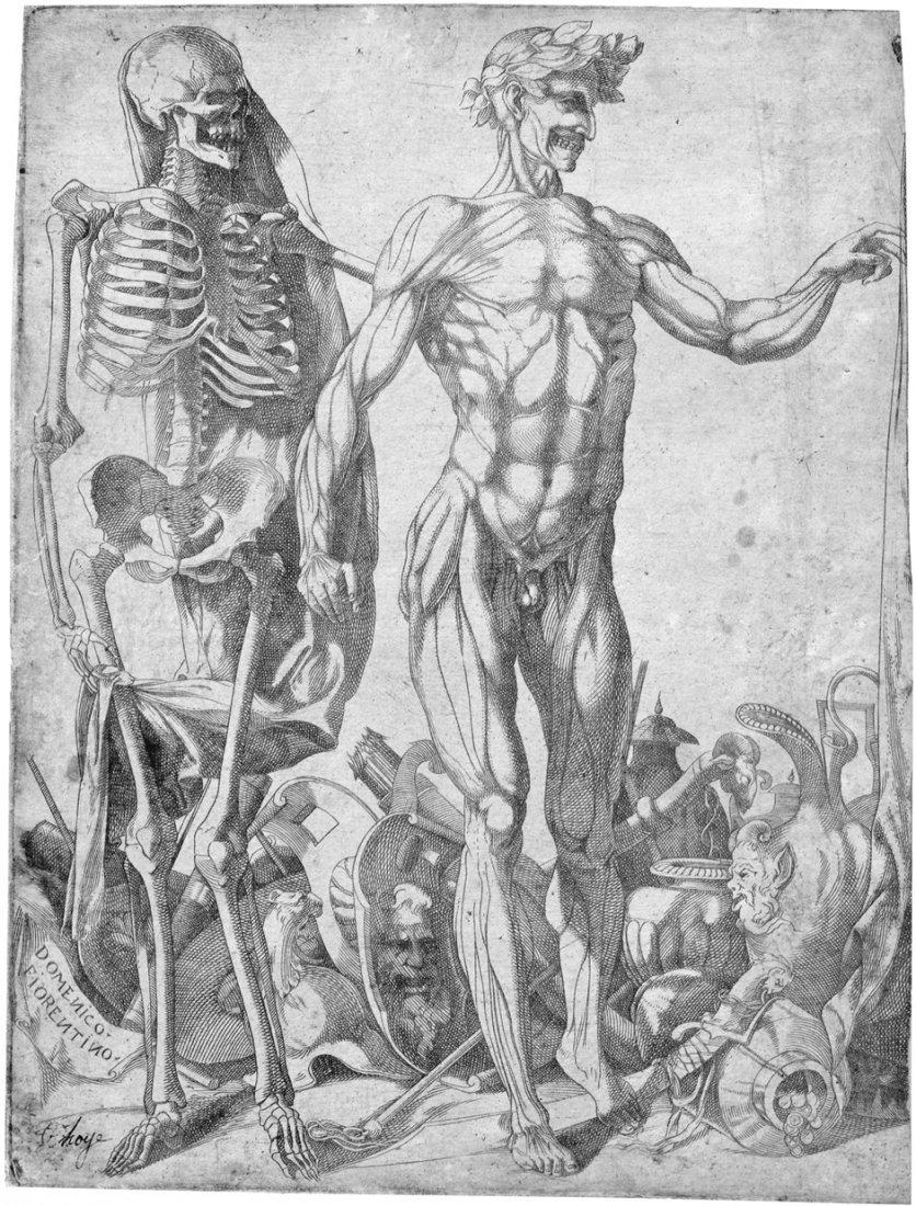 Barbiere, Domenico del: Squelettes et Ecorchés