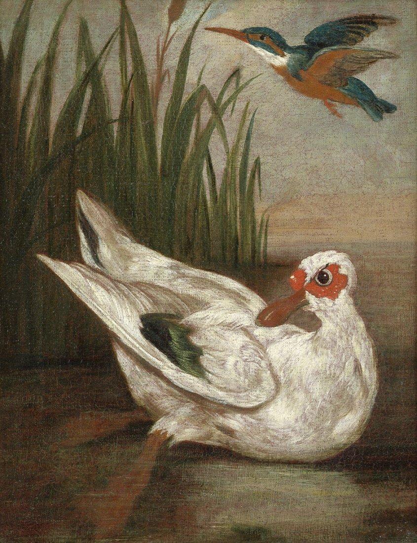 Italienisch - um 1700: Ente und Eisvogel
