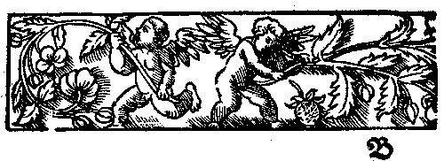 817: Kinthisius, Jodocus: Miscellanea, vnd ein warhafft