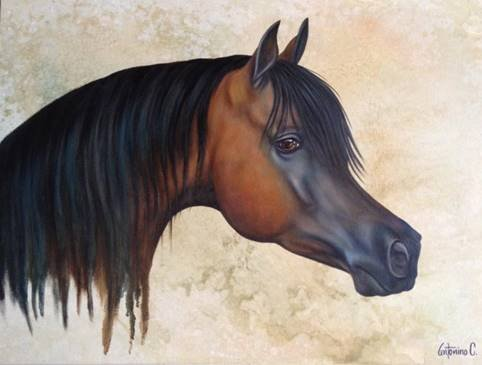 Sable Stallion-Mixed Media Original Antonino
